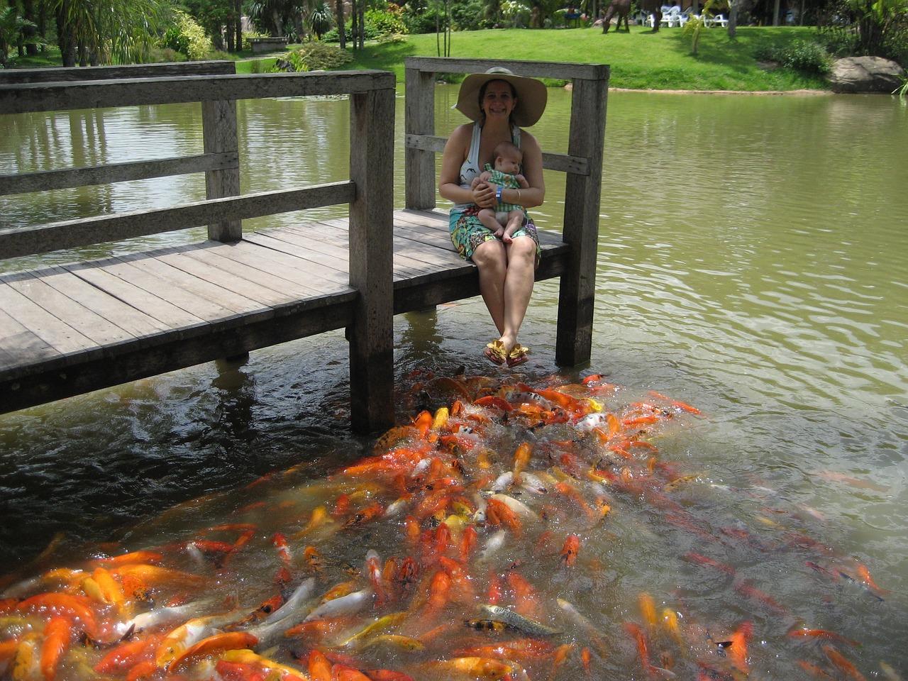 【独特】私の熱帯魚水槽の水換え方法をご紹介