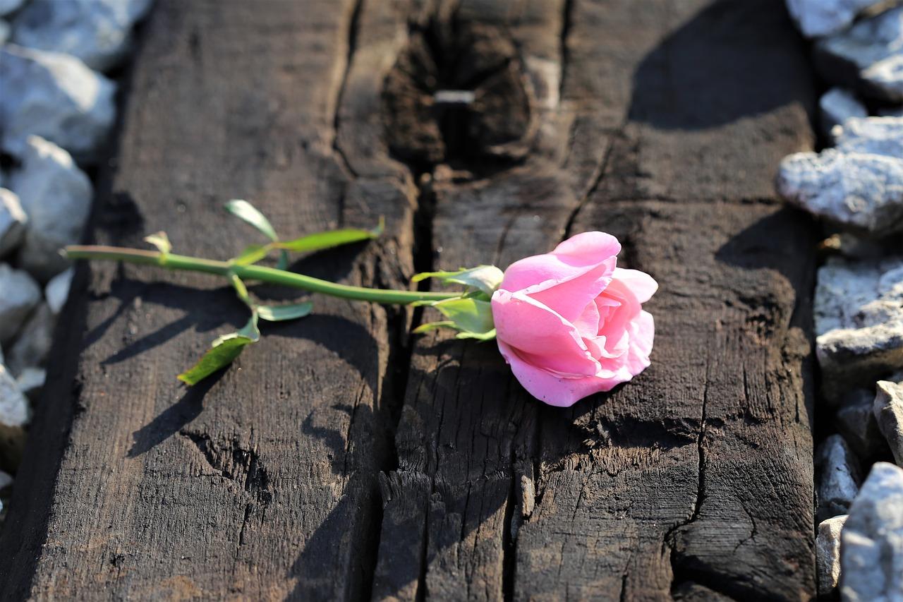 なぜ失恋の悩みは時間が解消するのか?「第三者視点」の重要性